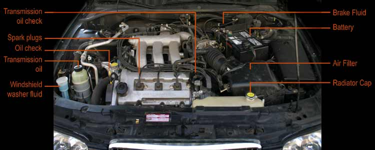 Under The Hood Diagram Car Pictures - Car Canyon